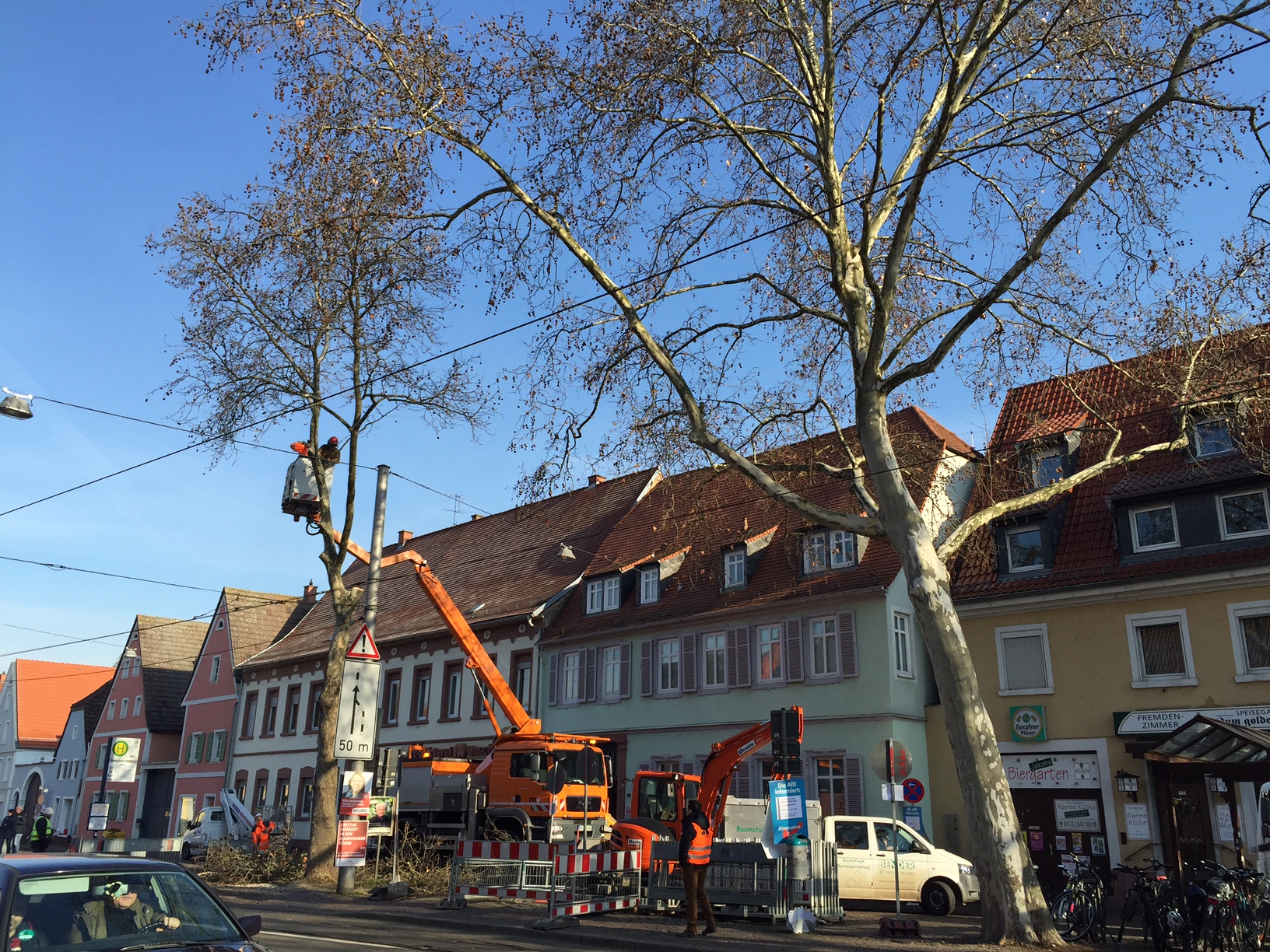 Baum Planken