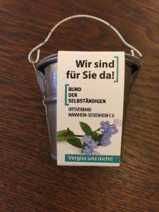 vergissmeinnicht Pflanzeimerchen mit Substrattablette mit Samen